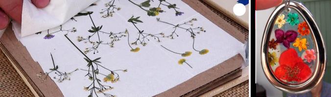 creation_fleurs.png